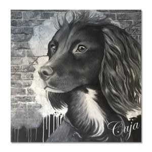 hundeportræt i sort og hvid