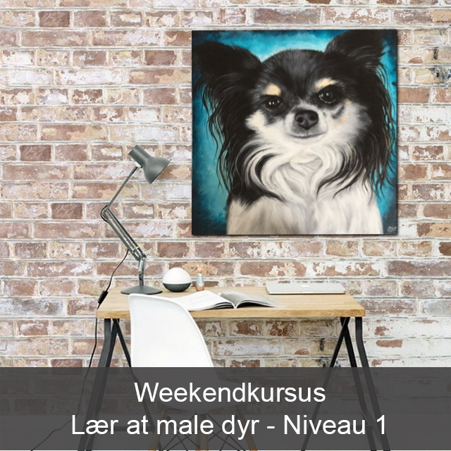 Lær at male dyr - Weekendkursus